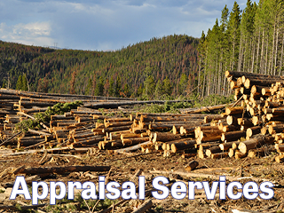 WFCA timberland appraisal workshop
