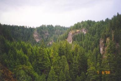 USDA Forest Service Region 1 Long-term Forest Management