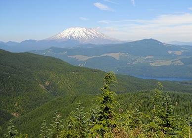 Mount St. Helens Phase I Conservation Easement