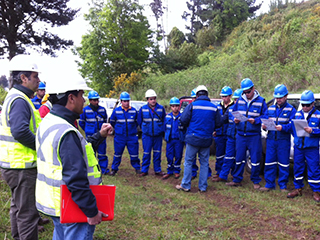 Chilean Due Diligence Forestry Inventory Verification