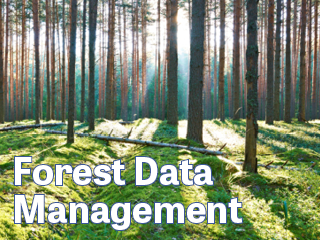 Forest Inventory data Management