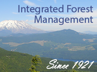 Innovative Forest Managment Solutions