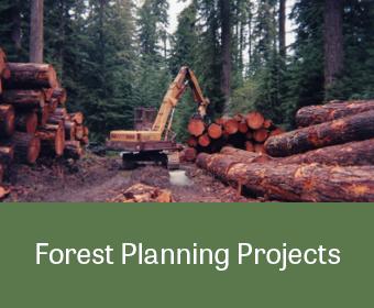 ProjectLinkGraphic_GIS_ForestPlanning