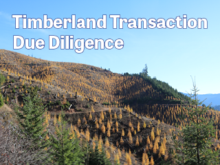 Timberland, Timber Inventory, Inventory Verification