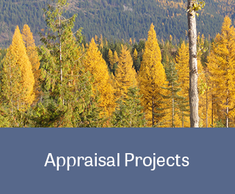 MB&G Appraisal Projects