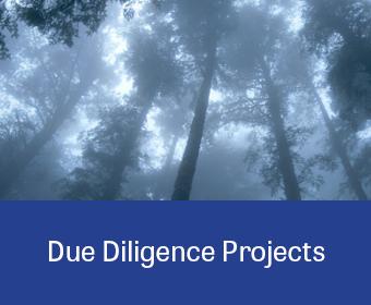ProjectLinkGraphic_DueDiligence