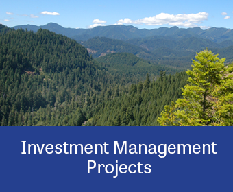 ProjectLinkGraphic_Investment