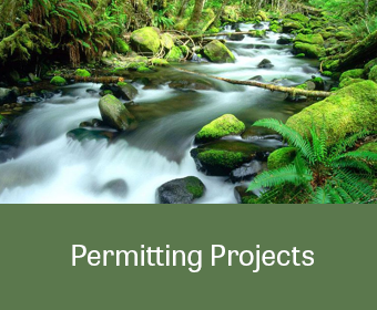 ProjectLinkGraphic_Permitting