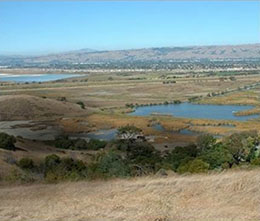 South San Francisco Bay Shoreline Feasibility Study